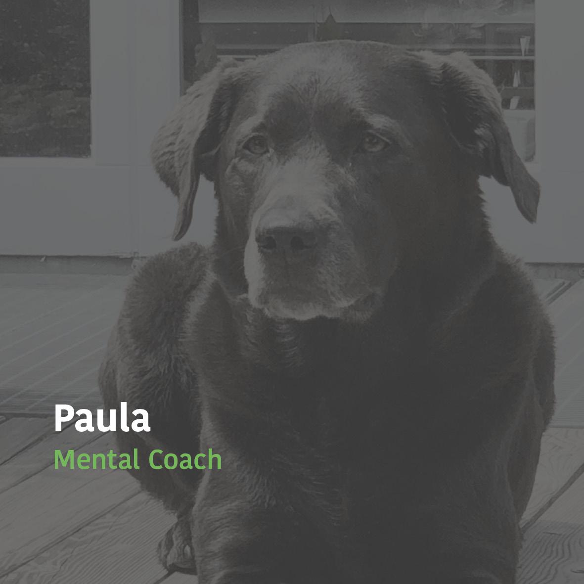 Kuhrhaus_Paula_kontakt